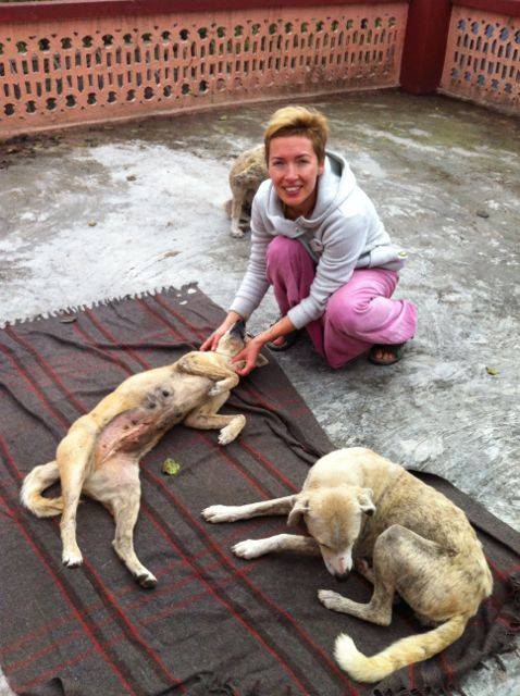 Animal Rescue Project - Jan-Feb 2016 (16)